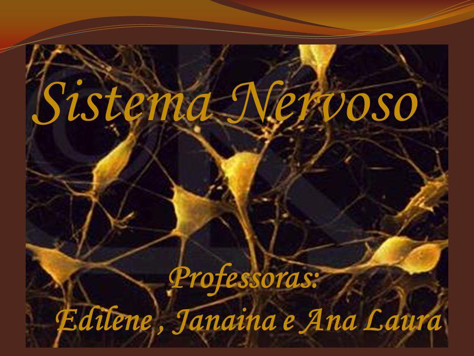 Sistema Nervoso Professoras: Edilene, Janaina e Ana Laura