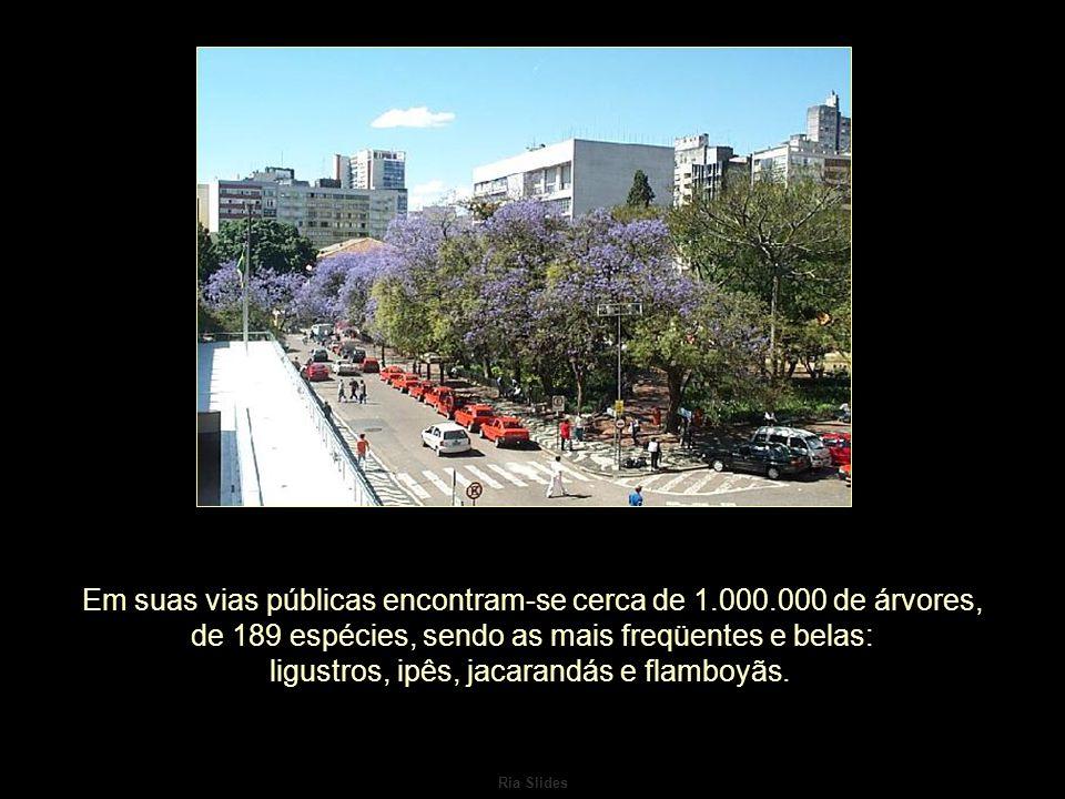 Ria Slides A Porto Alegre que, a partir da década de 40, assumiu definitivamente seu caráter de centro administrativo, comercial, industrial e financeiro do estado.