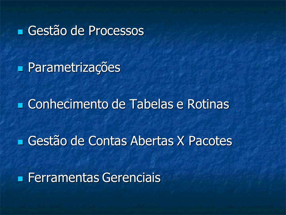  Gestão de Processos  Parametrizações  Conhecimento de Tabelas e Rotinas  Gestão de Contas Abertas X Pacotes  Ferramentas Gerenciais