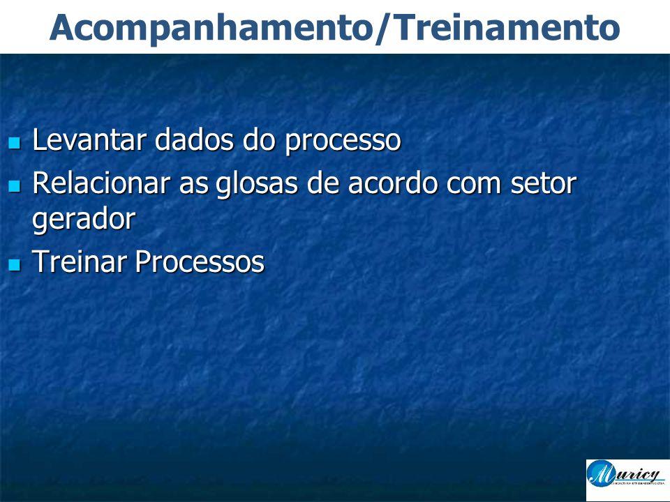  Levantar dados do processo  Relacionar as glosas de acordo com setor gerador  Treinar Processos Acompanhamento/Treinamento