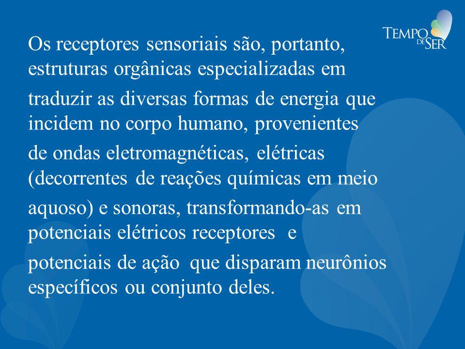 Os receptores sensoriais são, portanto, estruturas orgânicas especializadas em traduzir as diversas formas de energia que incidem no corpo humano, pro