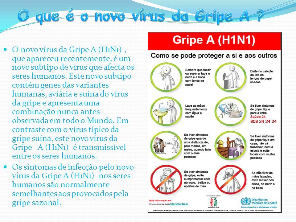  O novo vírus da Gripe A (H1N1), que apareceu recentemente, é um novo subtipo de vírus que afecta os seres humanos. Este novo subtipo contém genes da