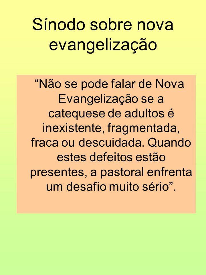 Sínodo sobre nova evangelização Não se pode falar de Nova Evangelização se a catequese de adultos é inexistente, fragmentada, fraca ou descuidada.