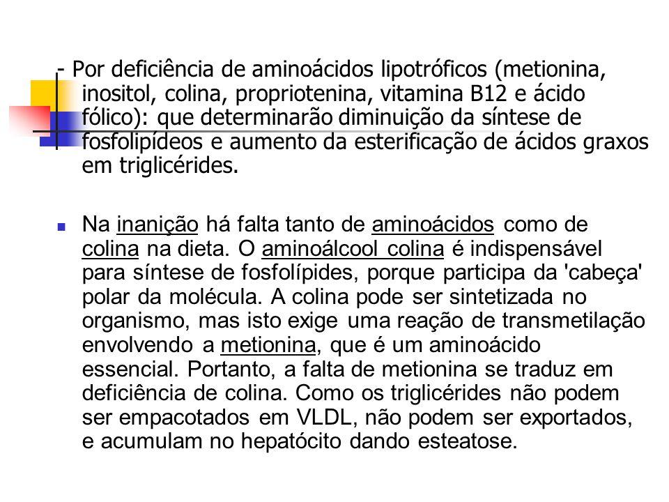  Por hipóxia, deficiência protéica na dieta, ou por excesso de colesterol e gorduras na dieta.