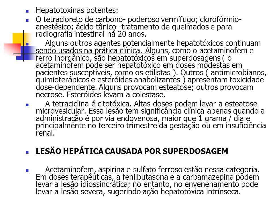 Metabolismo lipídico hepático: DIETA (gordura) Intestino Tecido adiposo Corrente sanguínea LIPOPROTEÍNAS micelas REL RER Acetil COA