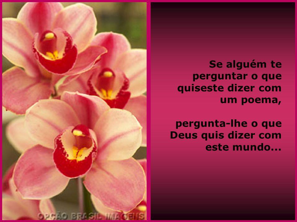 Se alguém te perguntar o que quiseste dizer com um poema, pergunta-lhe o que Deus quis dizer com este mundo...