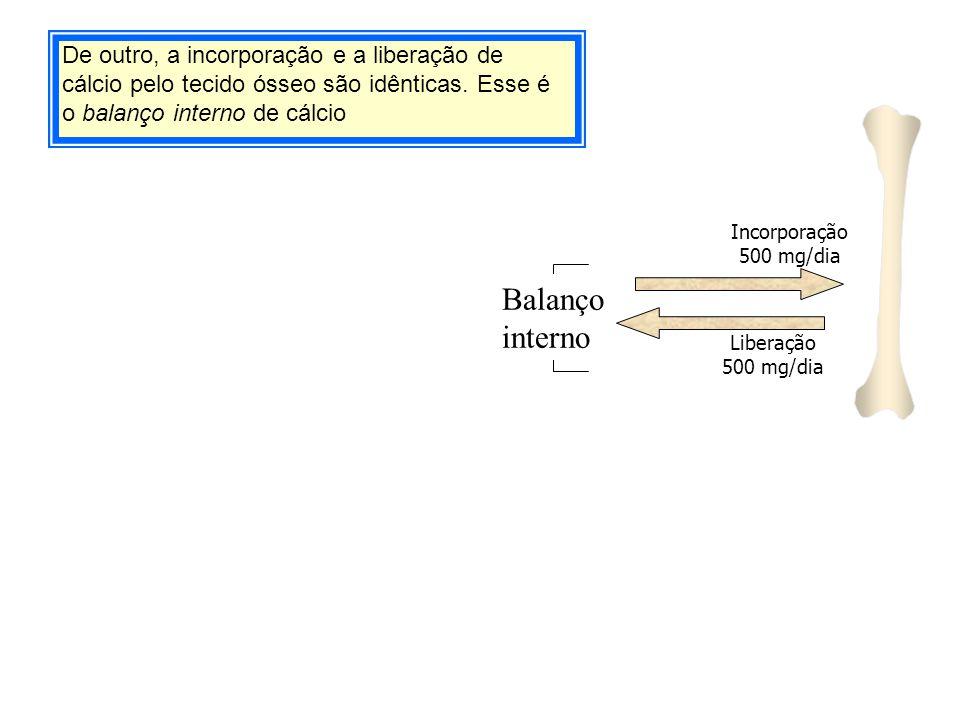 De outro, a incorporação e a liberação de cálcio pelo tecido ósseo são idênticas. Esse é o balanço interno de cálcio Balanço interno Liberação 500 mg/