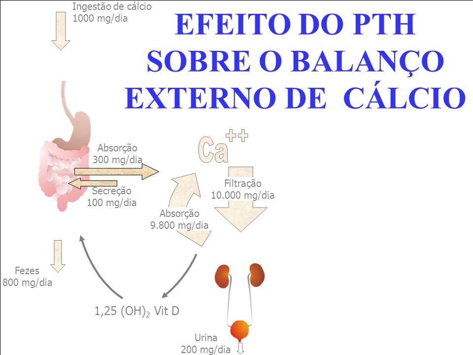 Ingestão de cálcio 1000 mg/dia Fezes 800 mg/dia Absorção 300 mg/dia Secreção 100 mg/dia Filtração 10.000 mg/dia Urina 200 mg/dia 1,25 (OH) 2 Vit D Abs