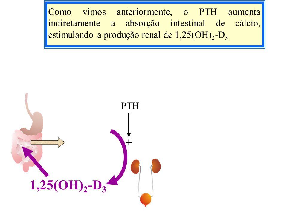 Como vimos anteriormente, o PTH aumenta indiretamente a absorção intestinal de cálcio, estimulando a produção renal de 1,25(OH) 2 -D 3 1,25(OH) 2 -D 3