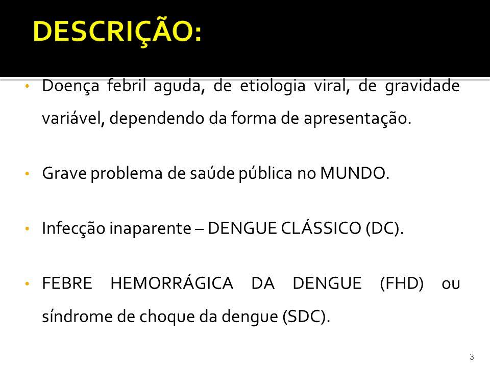  RESTRINGEN-SE AO VETOR Aedes aegypti, não há vacinas nem drogas específicas  Manejo ambiental, controle químico, melhoria de condições ambientais e participação da população  CONSCIENTIZAR A COMUNIDADE DO PERIGO DA ÁGUA PARADA 34
