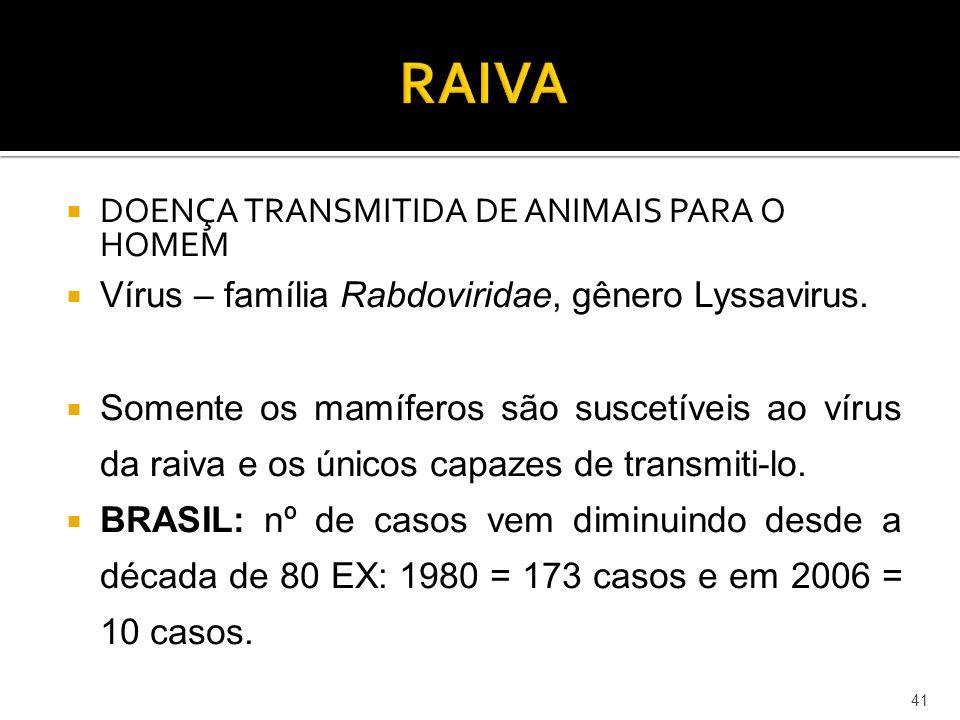  DOENÇA TRANSMITIDA DE ANIMAIS PARA O HOMEM  Vírus – família Rabdoviridae, gênero Lyssavirus.  Somente os mamíferos são suscetíveis ao vírus da rai