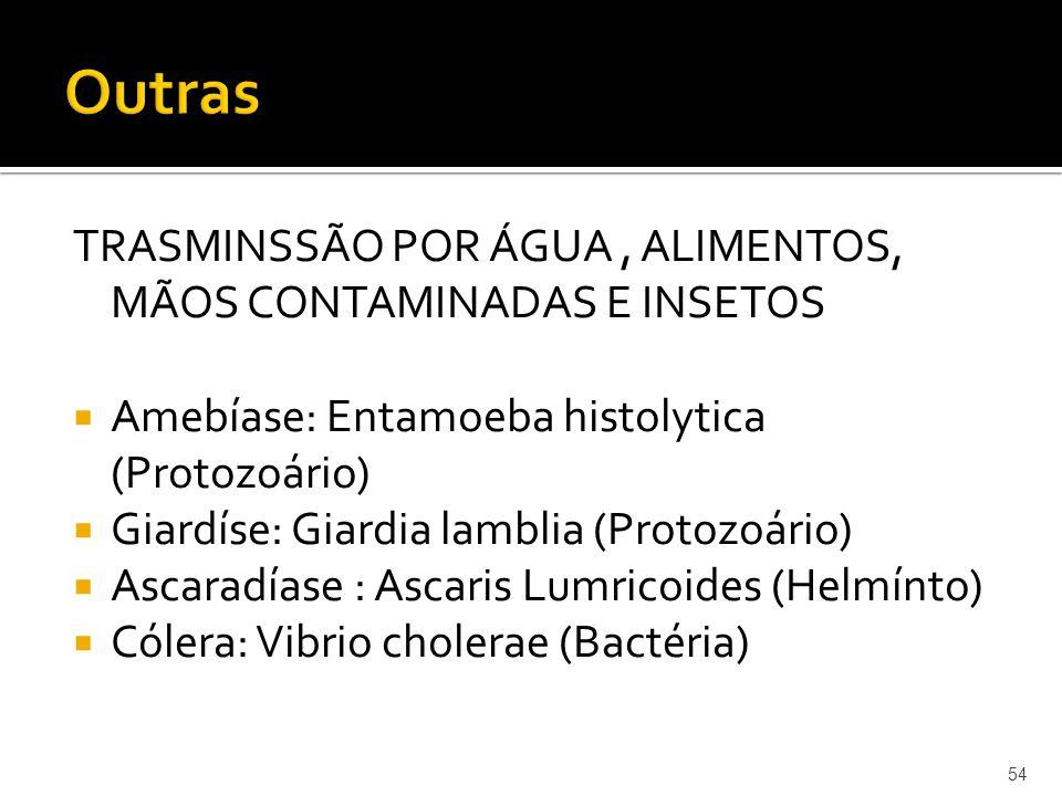 TRASMINSSÃO POR ÁGUA, ALIMENTOS, MÃOS CONTAMINADAS E INSETOS  Amebíase: Entamoeba histolytica (Protozoário)  Giardíse: Giardia lamblia (Protozoário)