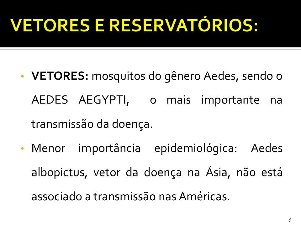 • VETORES: mosquitos do gênero Aedes, sendo o AEDES AEGYPTI, o mais importante na transmissão da doença. • Menor importância epidemiológica: Aedes alb