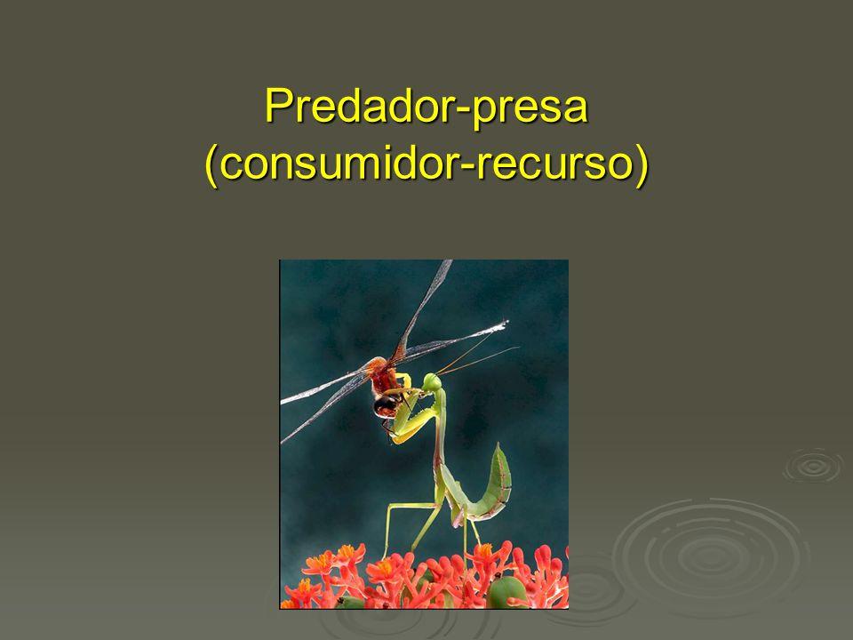 Predador-presa (consumidor-recurso)