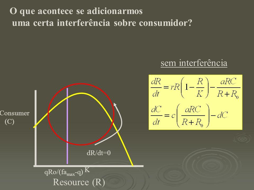 sem interferência Resource (R) Consumer (C) dR/dt=0 K qRo/(fa max -q) O que acontece se adicionarmos uma certa interferência sobre consumidor?