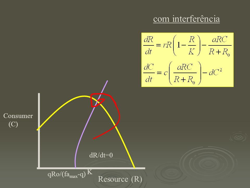 Resource (R) Consumer (C) dR/dt=0 K qRo/(fa max -q) com interferência