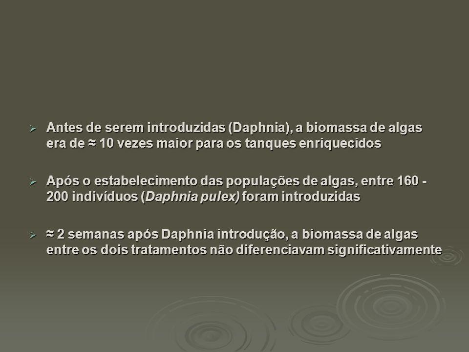  Antes de serem introduzidas (Daphnia), a biomassa de algas era de ≈ 10 vezes maior para os tanques enriquecidos  Após o estabelecimento das populaç