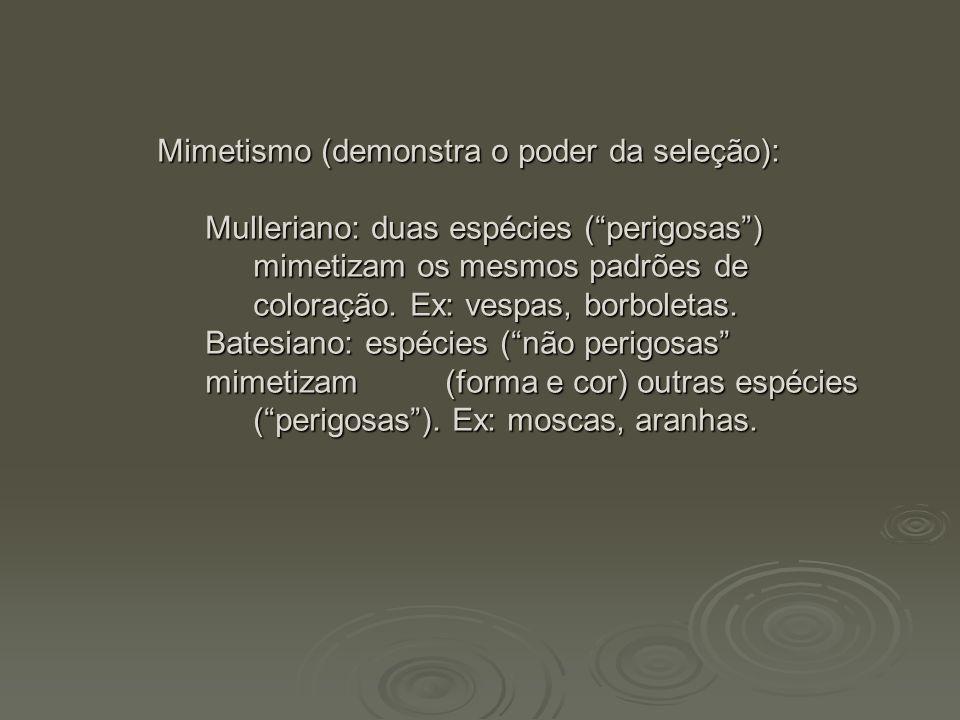 """Mimetismo (demonstra o poder da seleção): Mulleriano: duas espécies (""""perigosas"""") mimetizam os mesmos padrões de coloração. Ex: vespas, borboletas. Ba"""