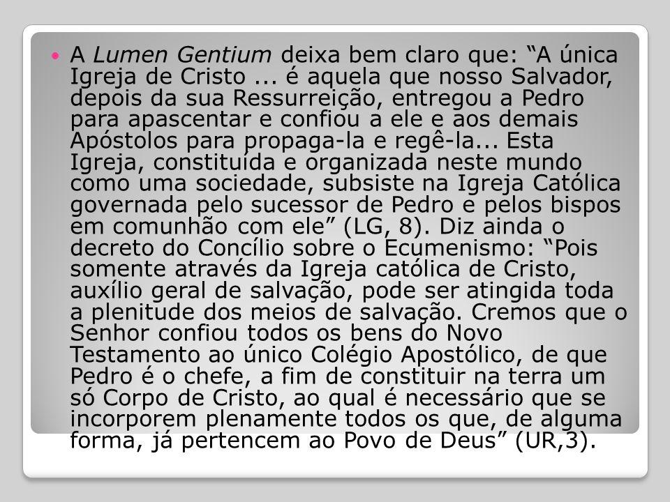  A Igreja também reconhece que: ´Muitos elementos de santificação e de verdade existem fora dos limites visíveis da Igreja Católica´: a palavra escri