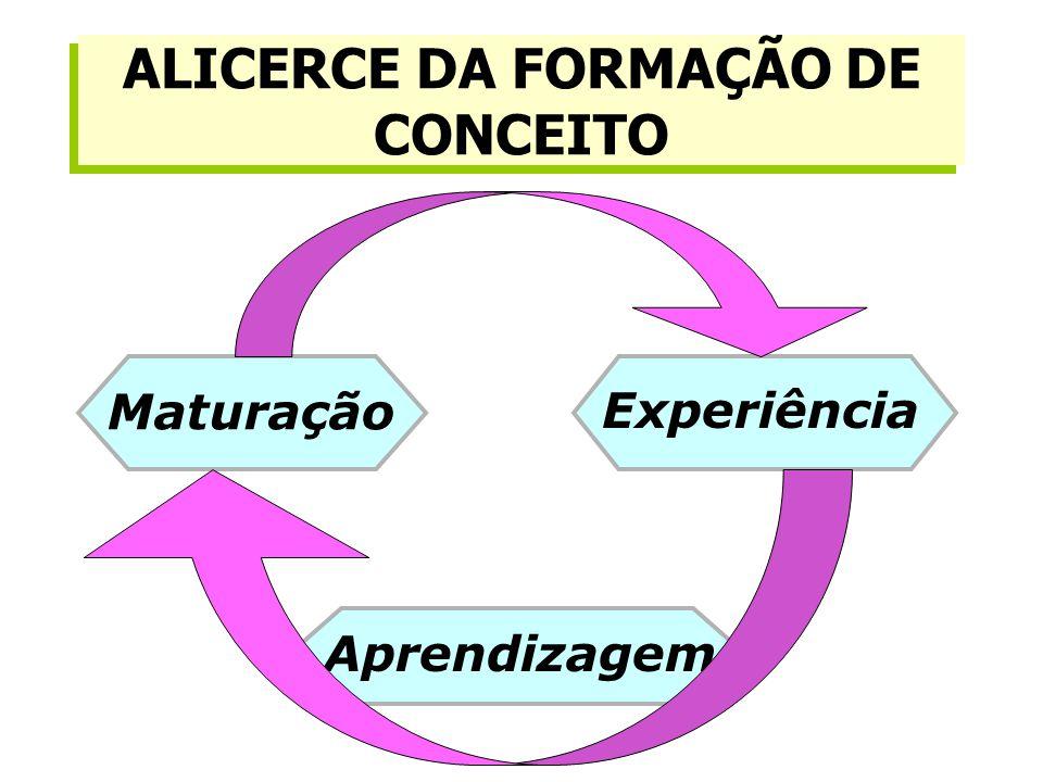 Maturação Experiência Aprendizagem ALICERCE DA FORMAÇÃO DE CONCEITO