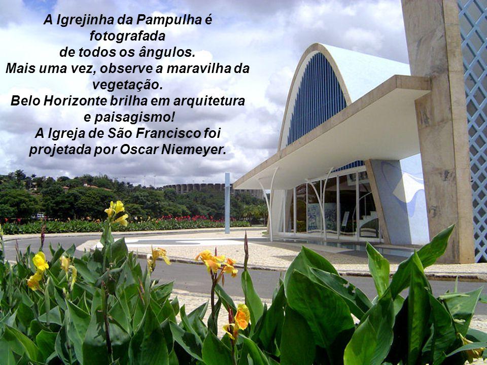Ao fundo os Estádios Mineirão e Mineirinho.Observe a lagoa e a vegetação.