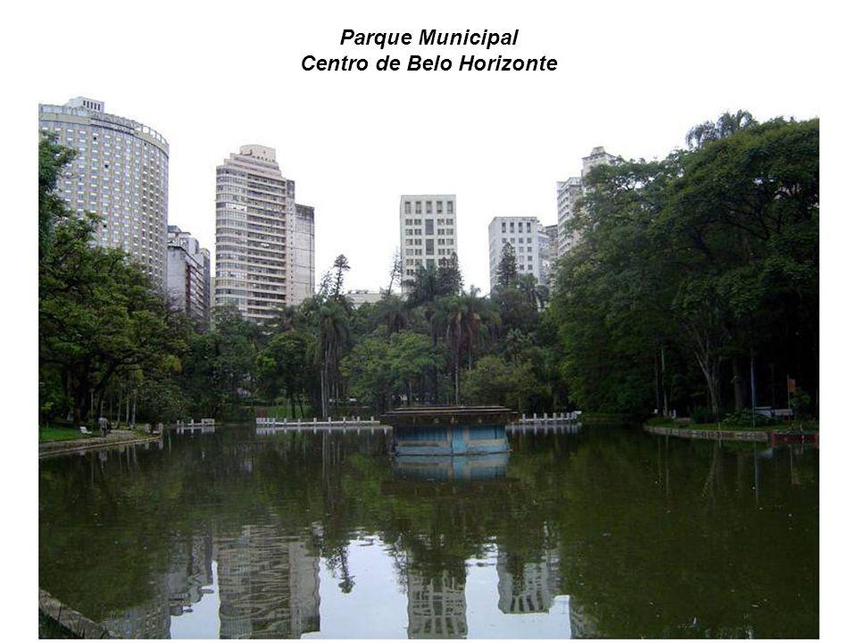 Vista do Parque das Mangabeiras desde o mirante.Muito verde em BH.
