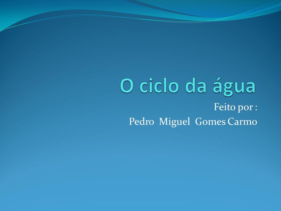 Feito por : Pedro Miguel Gomes Carmo