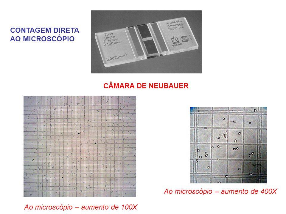 CÂMARA DE NEUBAUER Ao microscópio – aumento de 100X Ao microscópio – aumento de 400X CONTAGEM DIRETA AO MICROSCÓPIO