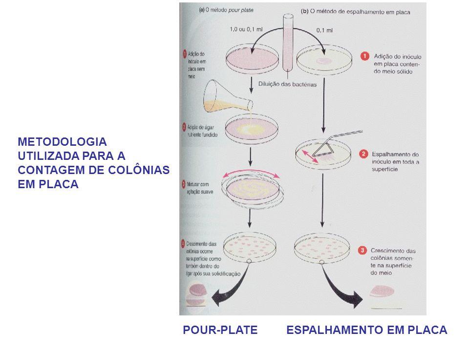 POUR-PLATE ESPALHAMENTO EM PLACA METODOLOGIA UTILIZADA PARA A CONTAGEM DE COLÔNIAS EM PLACA