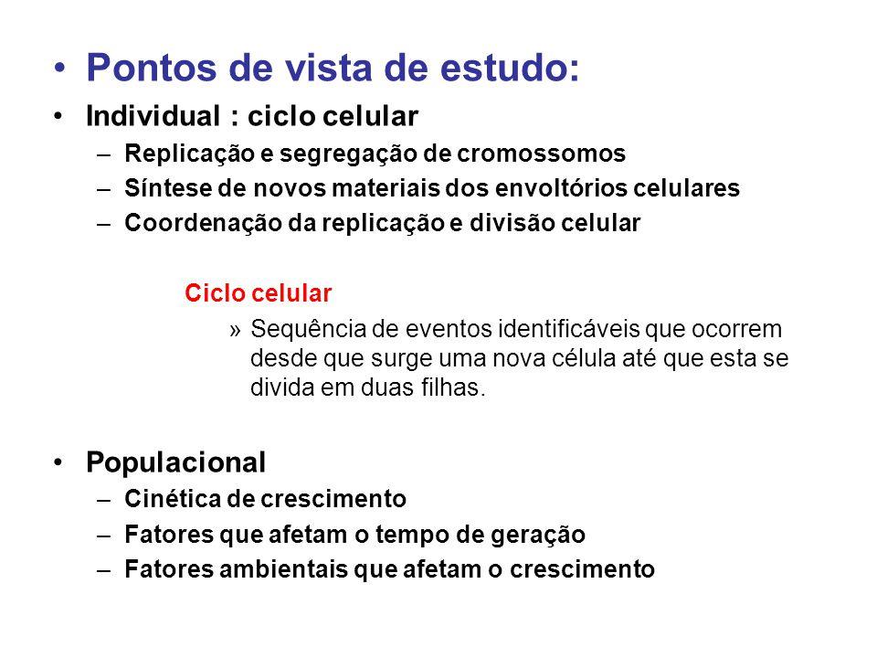 •Pontos de vista de estudo: •Individual : ciclo celular –Replicação e segregação de cromossomos –Síntese de novos materiais dos envoltórios celulares