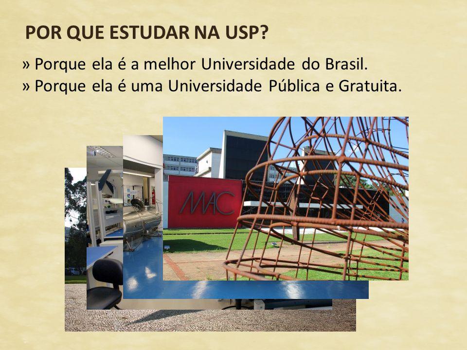 POR QUE ESTUDAR NA USP? » Porque ela é a melhor Universidade do Brasil. » Porque ela é uma Universidade Pública e Gratuita.