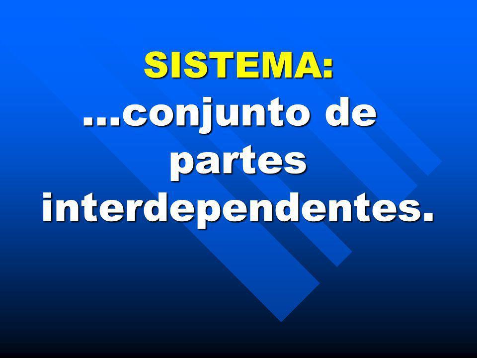 SISTEMA:...conjunto de partes interdependentes.