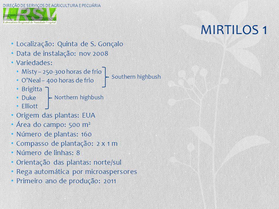 MIRTILOS 1 • Localização: Quinta de S. Gonçalo • Data de instalação: nov 2008 • Variedades: • Misty – 250-300 horas de frio • O'Neal – 400 horas de fr