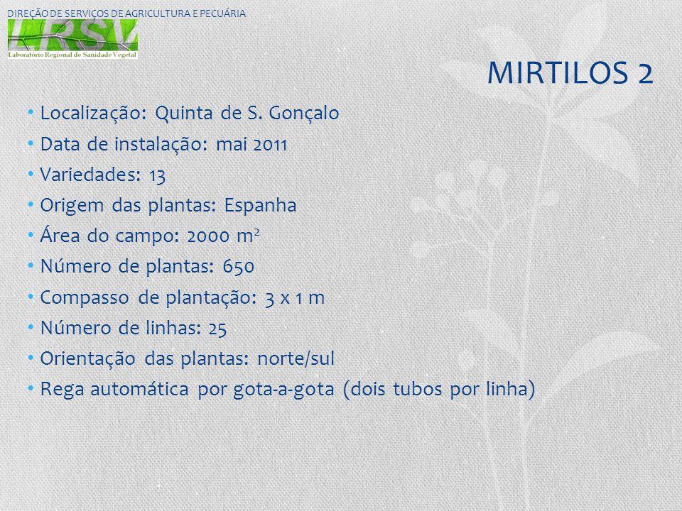 MIRTILOS 2 • Localização: Quinta de S. Gonçalo • Data de instalação: mai 2011 • Variedades: 13 • Origem das plantas: Espanha • Área do campo: 2000 m 2