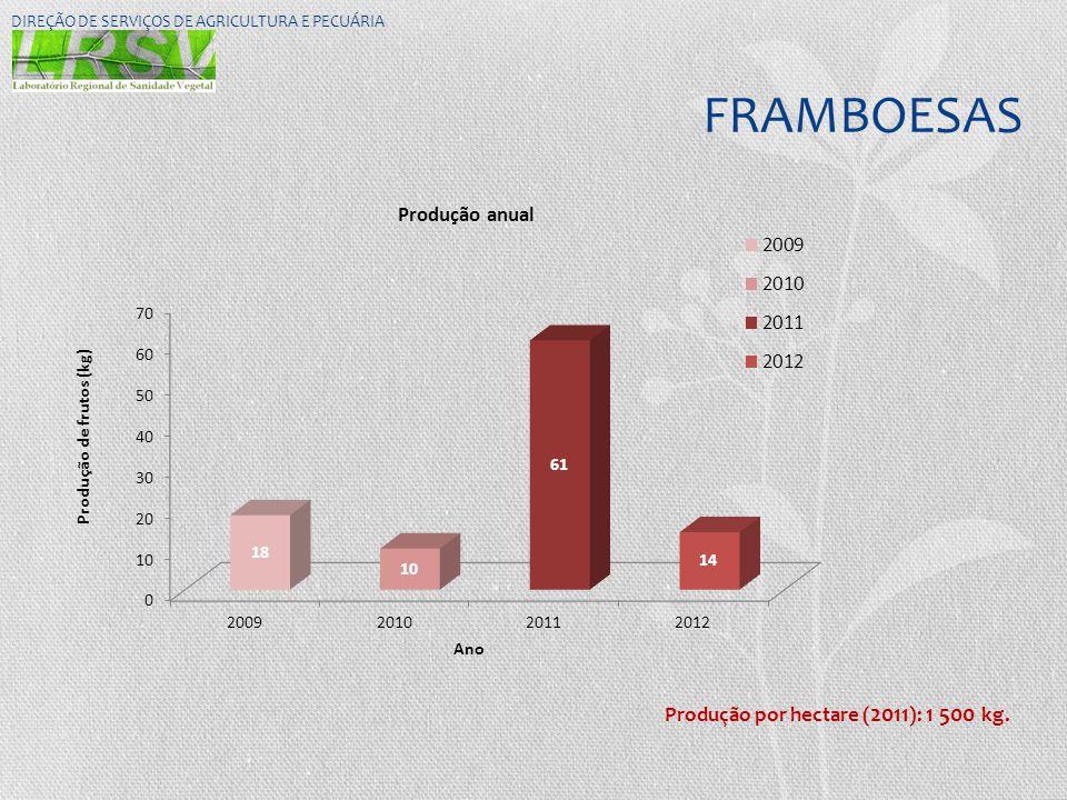 FRAMBOESAS DIREÇÃO DE SERVIÇOS DE AGRICULTURA E PECUÁRIA Produção por hectare ( 2011 ): 1 500 kg.