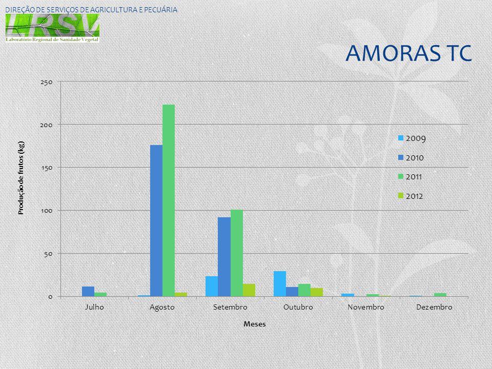 AMORAS TC DIREÇÃO DE SERVIÇOS DE AGRICULTURA E PECUÁRIA