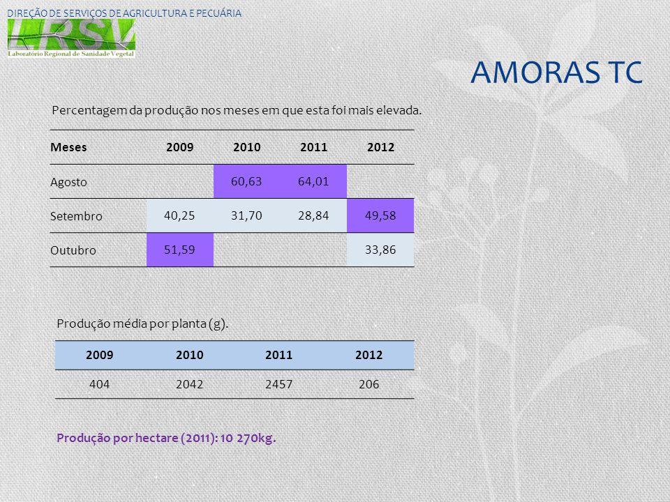 AMORAS TC DIREÇÃO DE SERVIÇOS DE AGRICULTURA E PECUÁRIA Meses2009201020112012 Agosto60,6364,01 Setembro40,2531,7028,8449,58 Outubro51,5933,86 Percenta