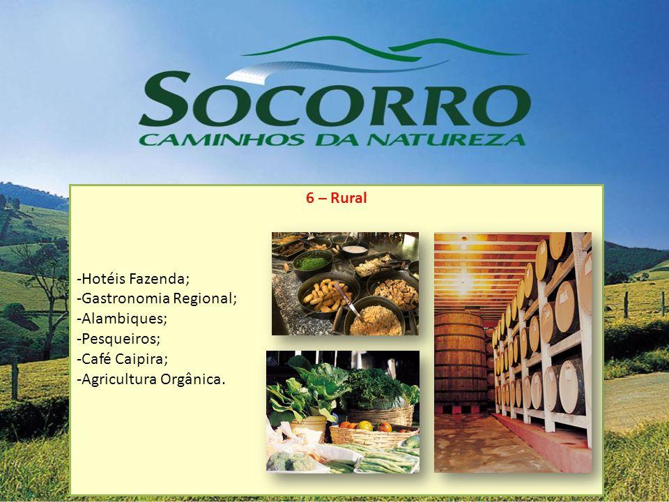 6 – Rural -Hotéis Fazenda; -Gastronomia Regional; -Alambiques; -Pesqueiros; -Café Caipira; -Agricultura Orgânica.