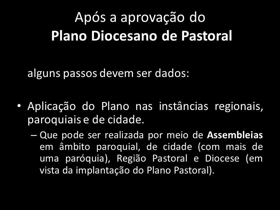 Após a aprovação do Plano Diocesano de Pastoral alguns passos devem ser dados: • Aplicação do Plano nas instâncias regionais, paroquiais e de cidade.