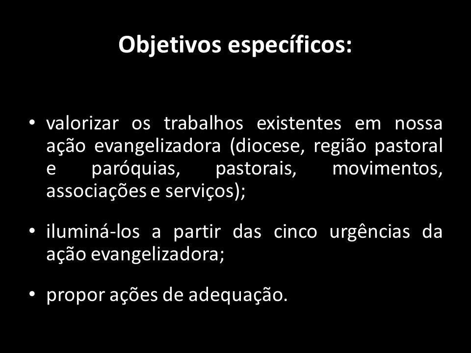 Objetivos específicos: • valorizar os trabalhos existentes em nossa ação evangelizadora (diocese, região pastoral e paróquias, pastorais, movimentos,