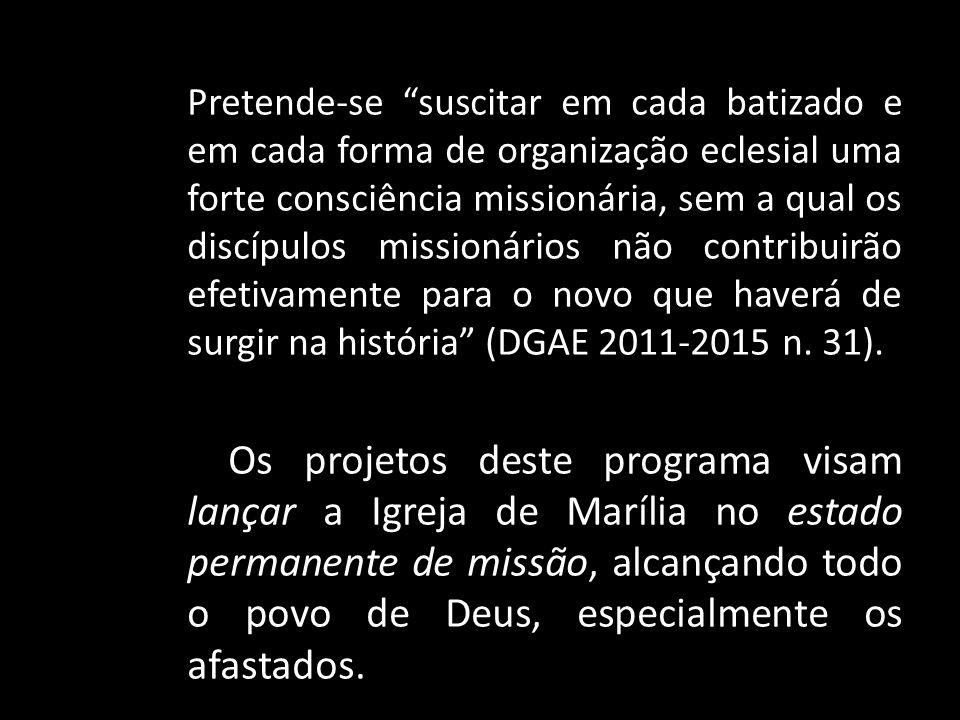 """Pretende-se """"suscitar em cada batizado e em cada forma de organização eclesial uma forte consciência missionária, sem a qual os discípulos missionário"""