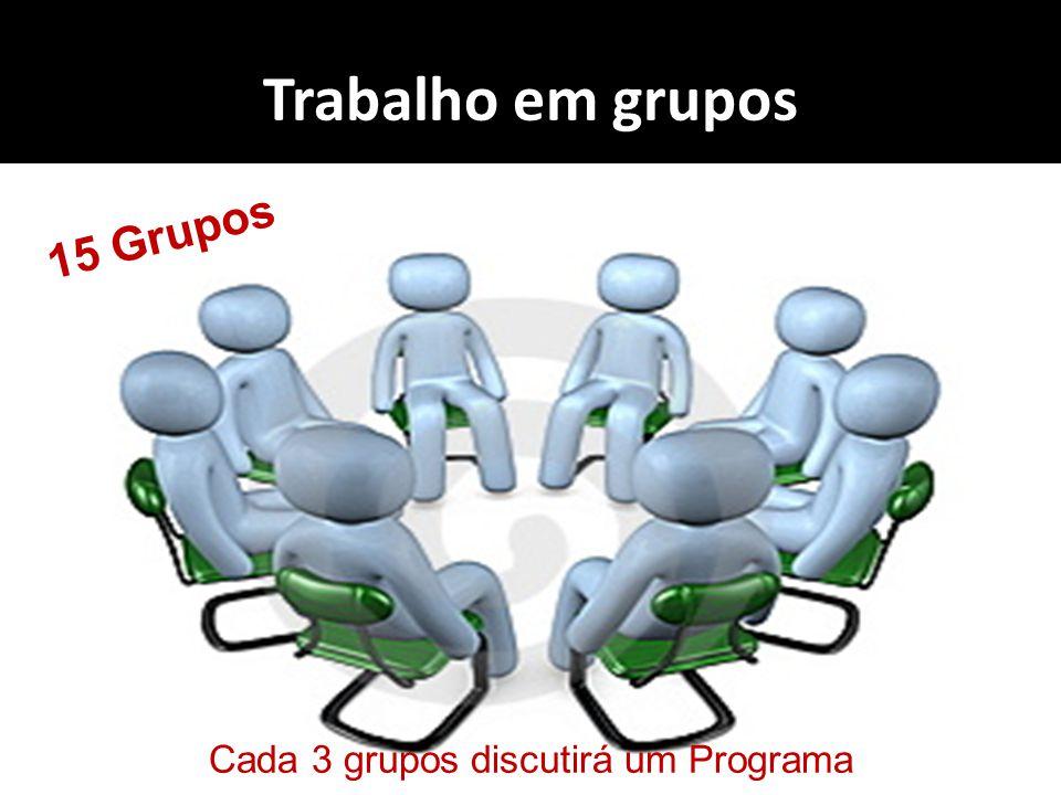 Trabalho em grupos 15 Grupos Cada 3 grupos discutirá um Programa