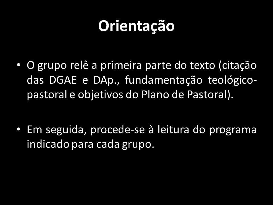 Orientação • O grupo relê a primeira parte do texto (citação das DGAE e DAp., fundamentação teológico- pastoral e objetivos do Plano de Pastoral). • E