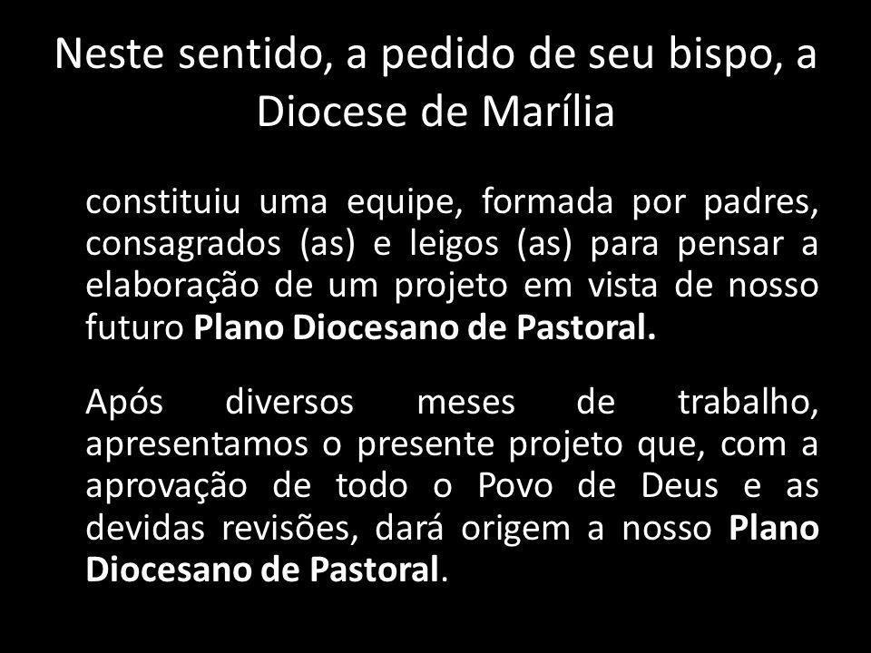 Neste sentido, a pedido de seu bispo, a Diocese de Marília constituiu uma equipe, formada por padres, consagrados (as) e leigos (as) para pensar a ela