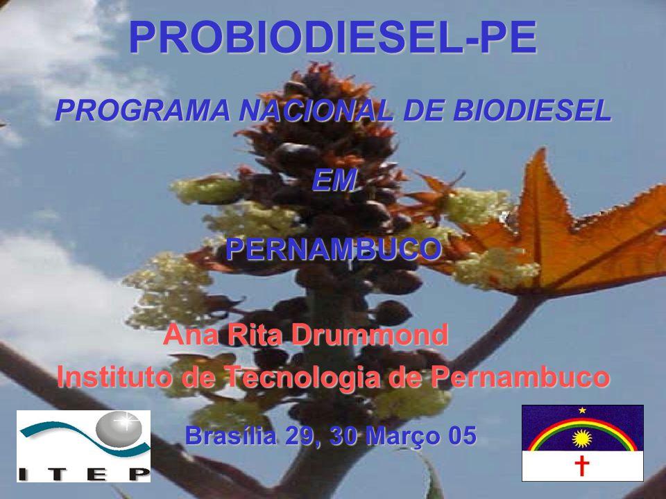 PROBIODIESEL-PE PROGRAMA NACIONAL DE BIODIESEL EMPERNAMBUCO Ana Rita Drummond Ana Rita Drummond Instituto de Tecnologia de Pernambuco Brasília 29, 30