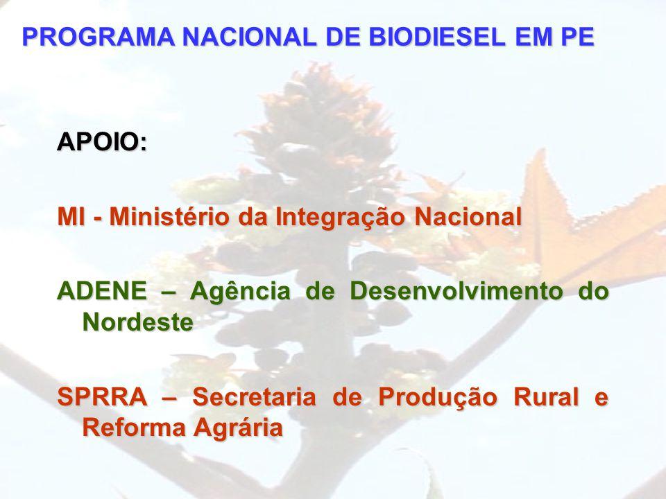 PROGRAMA NACIONAL DE BIODIESEL EM PE APOIO: MI - Ministério da Integração Nacional ADENE – Agência de Desenvolvimento do Nordeste SPRRA – Secretaria d