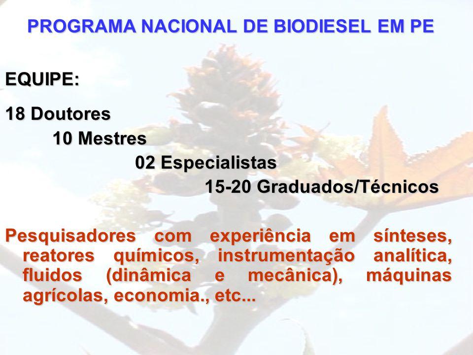 PROGRAMA NACIONAL DE BIODIESEL EM PE EQUIPE: 18 Doutores 10 Mestres 02 Especialistas 02 Especialistas 15-20 Graduados/Técnicos 15-20 Graduados/Técnico