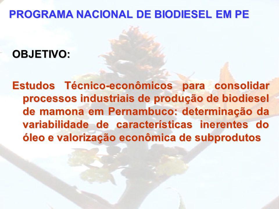 PROGRAMA NACIONAL DE BIODIESEL EM PE OBJETIVO: Estudos Técnico-econômicos para consolidar processos industriais de produção de biodiesel de mamona em