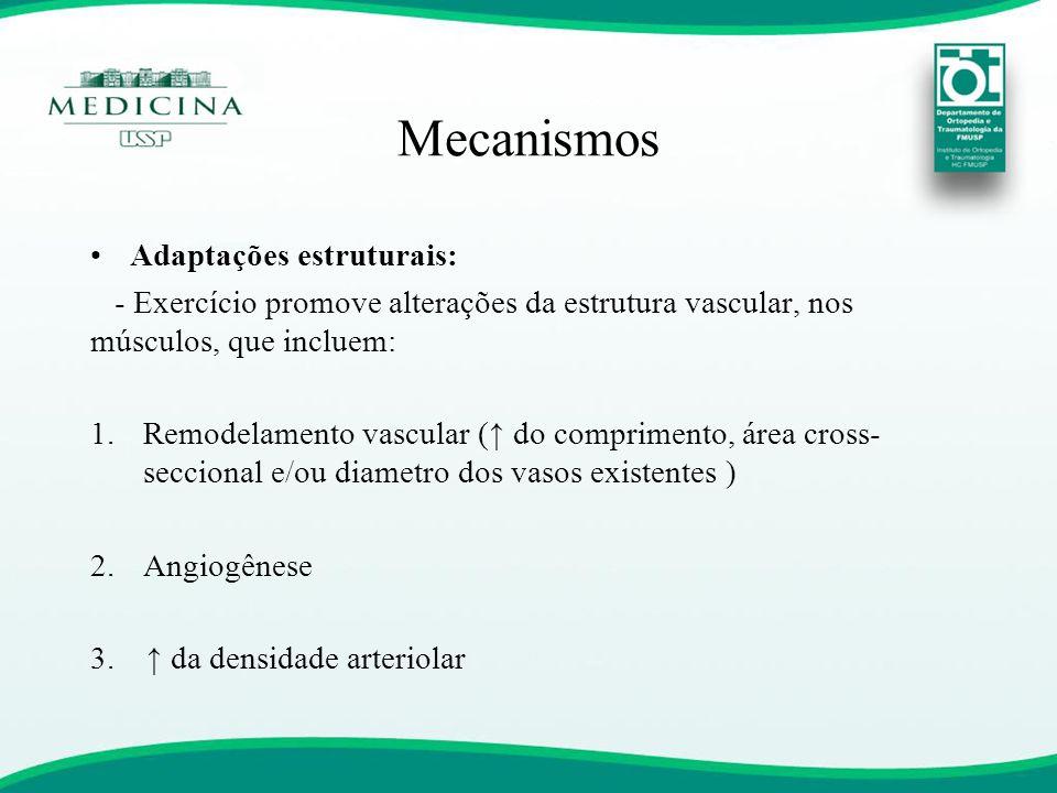 Mecanismos •Adaptações estruturais: - Exercício promove alterações da estrutura vascular, nos músculos, que incluem: 1.Remodelamento vascular (↑ do co