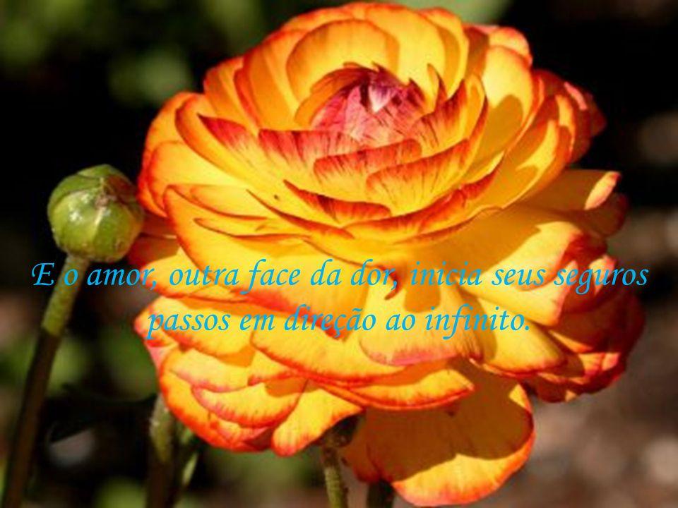 É então que a dor, companheira de séculos o deixa, e vai procurar outros corações imaturos para ministrar a mesma lição.